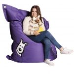 Dog @ BigBoy Beanbag.ie